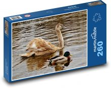Swan Puzzle of 260 pieces