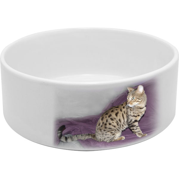 Bowl for cat - 1x print, a gift from a photo with printing for your pet